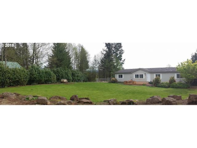 382 Robson Rd, Washougal, WA 98671 (MLS #18603417) :: The Dale Chumbley Group