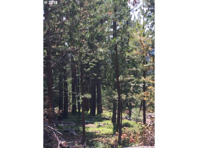 6 Diamond Peak Dr, Crescent Lake, OR 97733 (MLS #18606391) :: Hatch Homes Group