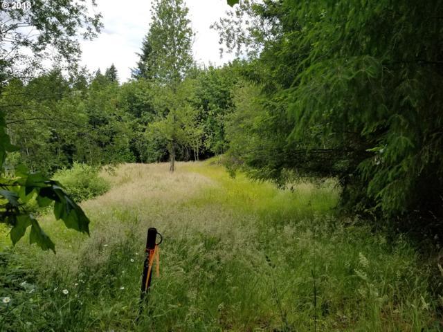 335 Hillsdale Dr, Woodland, WA 98674 (MLS #18608521) :: Keller Williams Realty Umpqua Valley