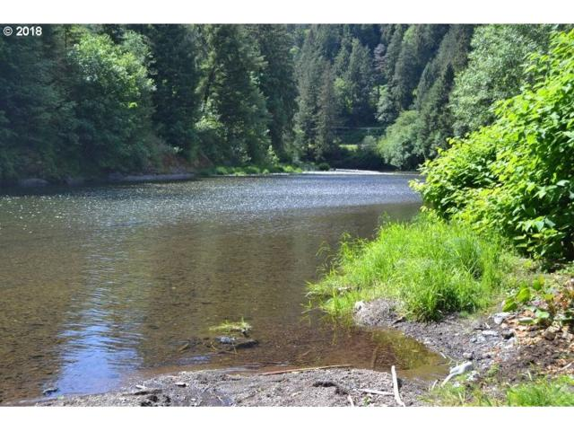 Wilson River Hwy, Tillamook, OR 97141 (MLS #18618096) :: TLK Group Properties