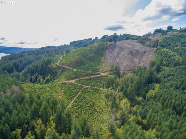 0 Lewis River Rd, Cougar, WA 98616 (MLS #18620682) :: Hatch Homes Group