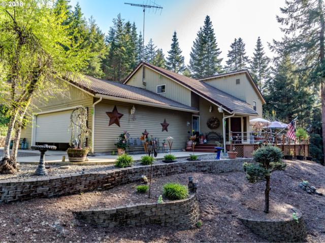8496 State Highway 42, Tenmile, OR 97481 (MLS #18621151) :: Keller Williams Realty Umpqua Valley