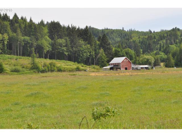 690 E Valley, Skamokawa, WA 98647 (MLS #18639396) :: Hatch Homes Group