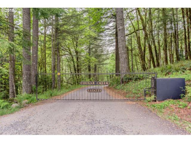 0 NE 380th Ave #3, Washougal, WA 98671 (MLS #18642707) :: McKillion Real Estate Group