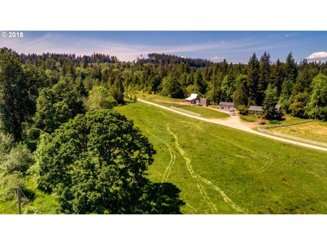 0 NE Lewisville Hwy, Battle Ground, WA 98604 (MLS #18650846) :: The Dale Chumbley Group