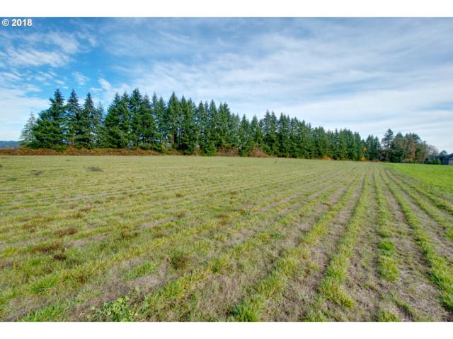 32313 NW Redhaven St, Hillsboro, OR 97124 (MLS #18651699) :: McKillion Real Estate Group