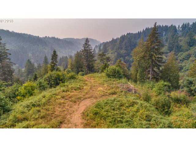 3232 Canyon Creek Block 1 Rd Lot 2, Washougal, WA 98671 (MLS #18657696) :: The Dale Chumbley Group