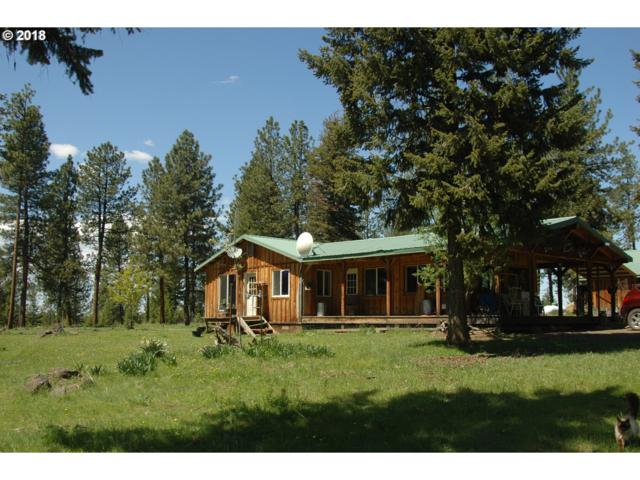 78179 N Whiskey Creek Rd, Wallowa, OR 97885 (MLS #18659775) :: Team Zebrowski