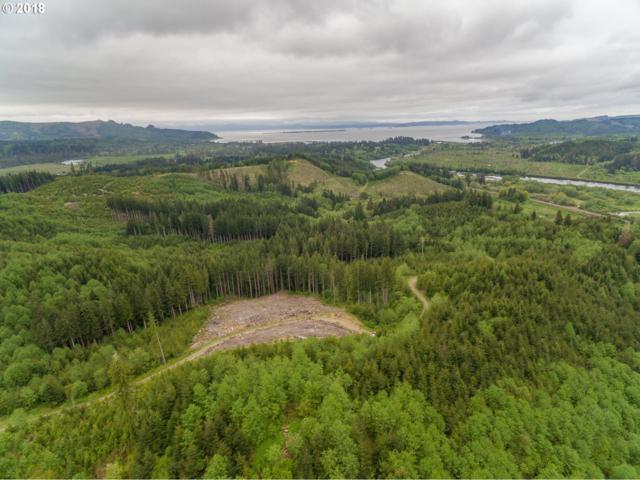 1 Sr4 Hwy, 086-Wahkiakum County, WA 98643 (MLS #18662496) :: McKillion Real Estate Group