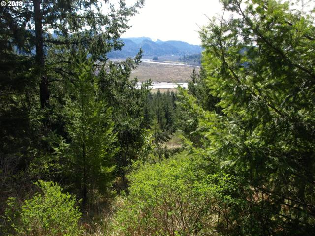 95550 Tututni Hollow Rd, Gold Beach, OR 97444 (MLS #18668482) :: Cano Real Estate