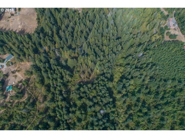 0 Windhurst, Bandon, OR 97411 (MLS #18668634) :: Stellar Realty Northwest