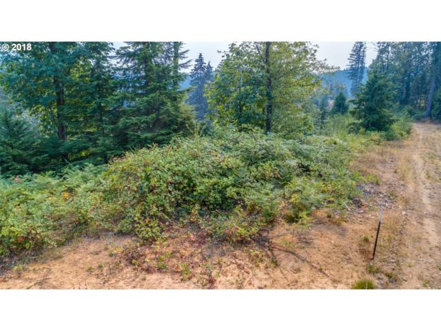 3232 Canyon Creek-Block 2 Rd Lot 3, Washougal, WA 98671 (MLS #18668742) :: The Dale Chumbley Group