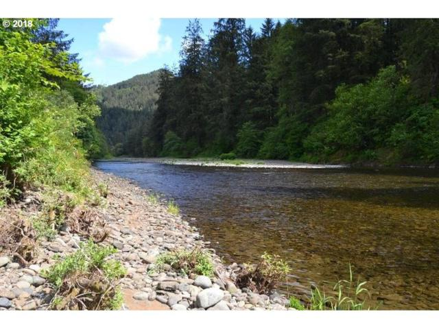 Wilson River Hwy, Tillamook, OR 97141 (MLS #18687514) :: TLK Group Properties