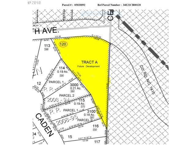 0 NE 6th Ave, Estacada, OR 97023 (MLS #18691214) :: TLK Group Properties