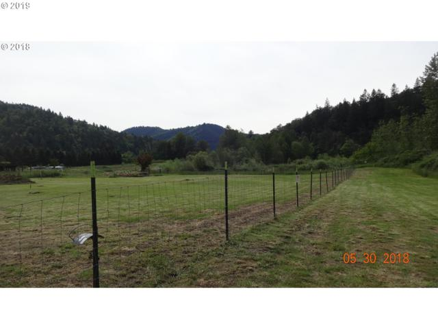 12750 Old Highway 99 South, Myrtle Creek, OR 97457 (MLS #19004250) :: Townsend Jarvis Group Real Estate