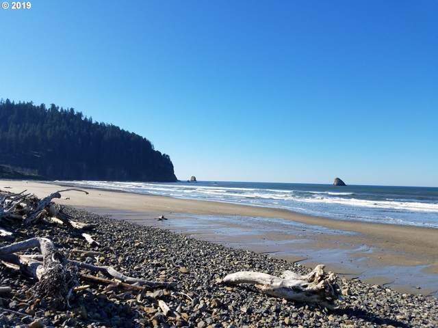 0 NW 3rd St, Cape Meares, OR 97141 (MLS #19006860) :: Townsend Jarvis Group Real Estate