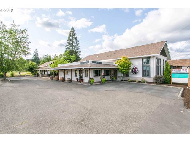 974 SW Hwy 99W, Dundee, OR 97115 (MLS #19010820) :: Brantley Christianson Real Estate