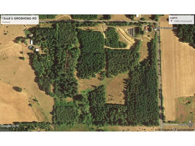 13488 S Groshong Rd, Molalla, OR 97038 (MLS #19012769) :: Gustavo Group