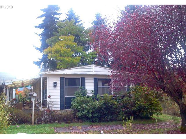 244 Lockwood Rd, Roseburg, OR 97471 (MLS #19013635) :: Townsend Jarvis Group Real Estate