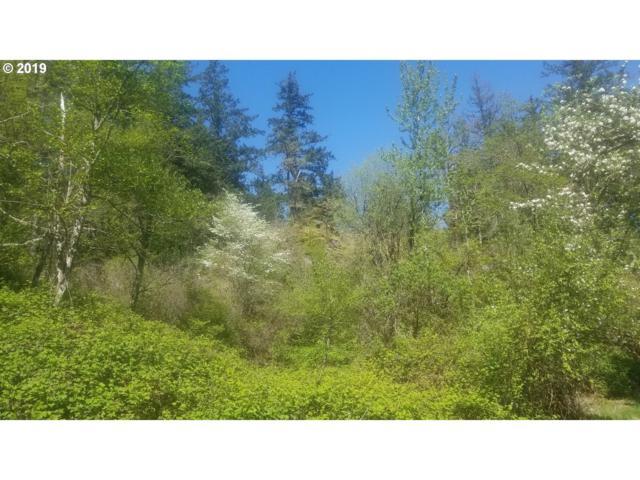 30841 State Hwy 14, Skamania, WA 98648 (MLS #19015042) :: Premiere Property Group LLC