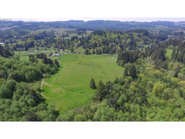 0 Bishop Creek Rd, Deer Island, OR 97054 (MLS #19015518) :: Townsend Jarvis Group Real Estate