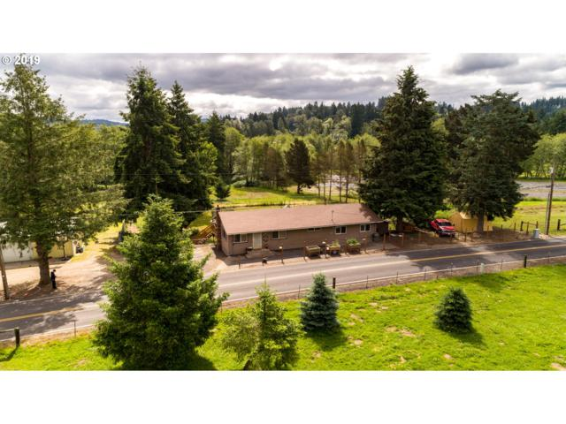 216 Wren Loop Rd, Castle Rock, WA 98611 (MLS #19020534) :: Matin Real Estate Group