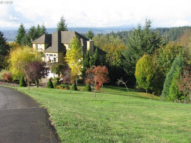 391 Hillsdale Dr, Woodland, WA 98674 (MLS #19021442) :: Premiere Property Group LLC