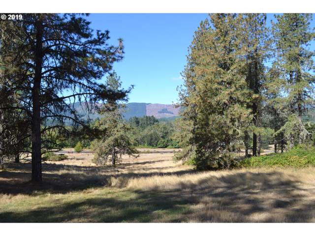 350 Sword Fern Ln, Roseburg, OR 97471 (MLS #19026592) :: The Lynne Gately Team