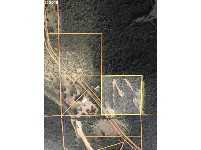 1281 Szydlo Rd, Carson, WA 98610 (MLS #19039323) :: Homehelper Consultants
