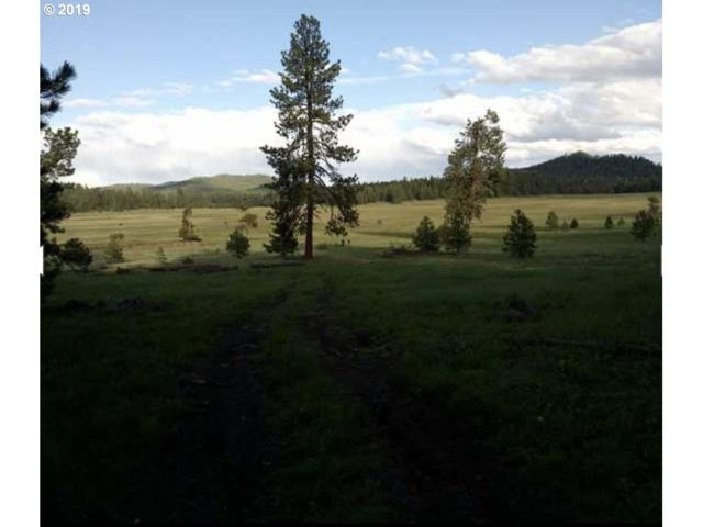 Keeney Meadows, Mount Vernon, OR 97865 (MLS #19040057) :: Fox Real Estate Group