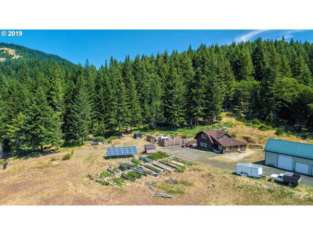 450 Rattlesnake Rd, Husum, WA 98623 (MLS #19042796) :: McKillion Real Estate Group