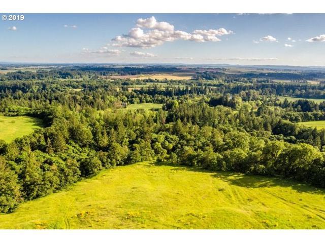 34175 NE Wilsonville Rd, Newberg, OR 97132 (MLS #19046209) :: Cano Real Estate