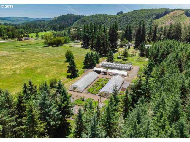 37545 Sunset Dr, Brownsville, OR 97327 (MLS #19050152) :: R&R Properties of Eugene LLC