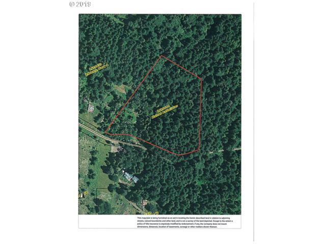Ross Ln, Cottage Grove, OR 97424 (MLS #19050315) :: The Lynne Gately Team