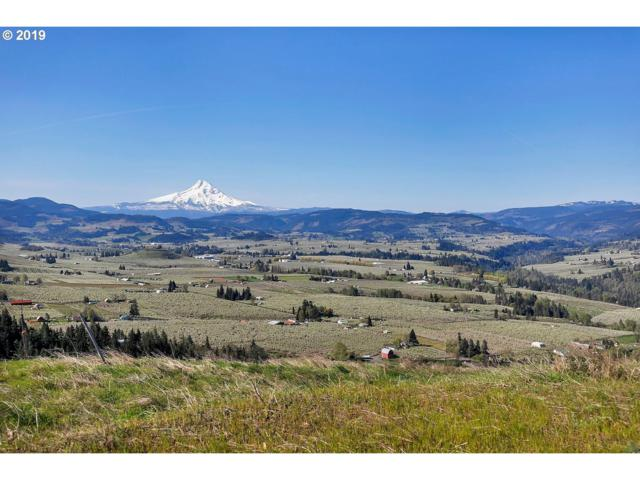 2333 Balsamroot Dr #8, Hood River, OR 97031 (MLS #19057673) :: Stellar Realty Northwest