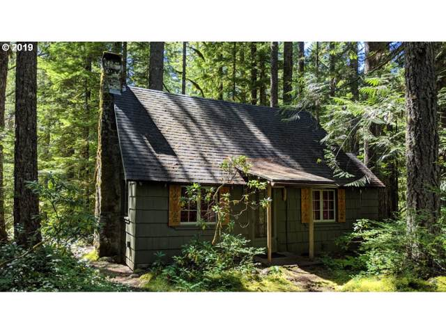 78212 E Road 32 Lot 10, Government Camp, OR 97028 (MLS #19059529) :: Fox Real Estate Group