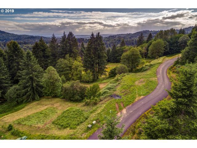 123 Idaho View Rd, Woodland, WA 98674 (MLS #19063534) :: Fox Real Estate Group