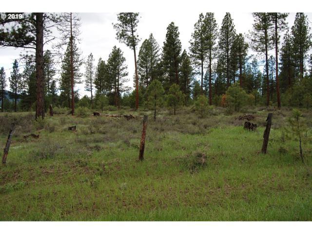 Deer Creek Rd, Baker City, OR 97814 (MLS #19063756) :: Territory Home Group