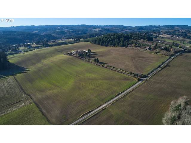 29000 SW Mcnay Rd, Hillsboro, OR 97123 (MLS #19078686) :: Next Home Realty Connection
