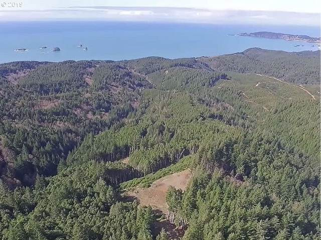 China Mountain Rd, Port Orford, OR 97465 (MLS #19080737) :: Change Realty