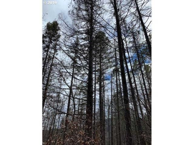0 W Pickett Creek Rd, Grants Pass, OR 97526 (MLS #19082347) :: R&R Properties of Eugene LLC