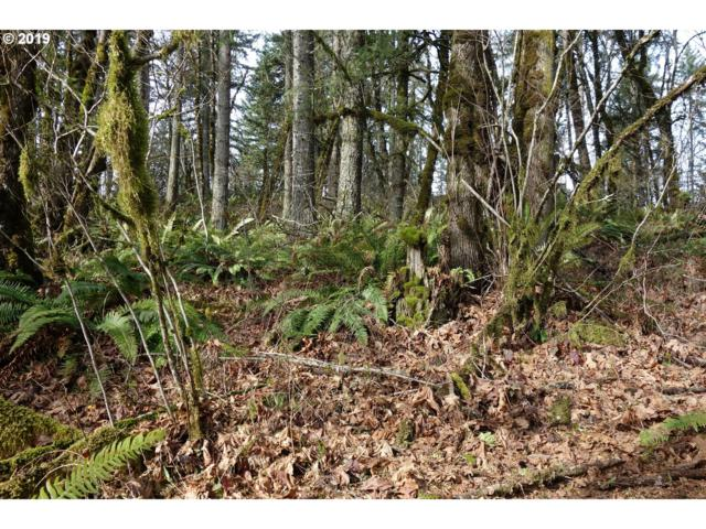Old Mohawk Rd, Springfield, OR 97478 (MLS #19096959) :: Territory Home Group