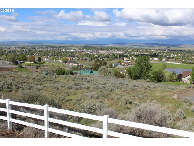 Scenic Vista Lane #11, Baker City, OR 97814 (MLS #19103032) :: Territory Home Group