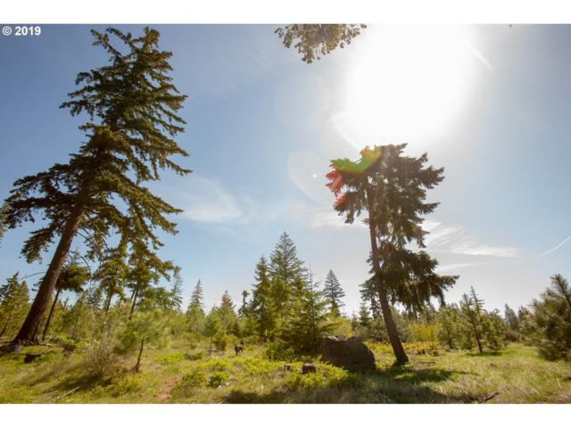 Titan Dr #2, Lyle, WA 98635 (MLS #19105634) :: McKillion Real Estate Group