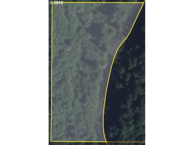 0 Washougal River Rd, Washougal, WA 98671 (MLS #19106759) :: Cano Real Estate