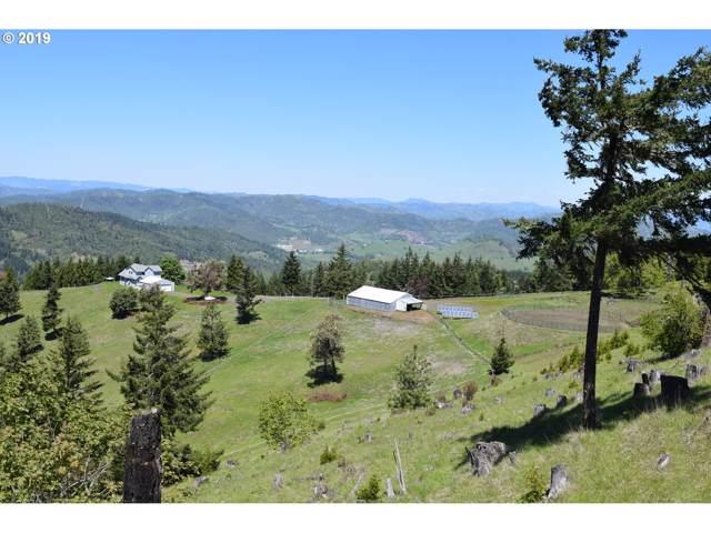 541 Dawson Rd, Roseburg, OR 97470 (MLS #19116206) :: Song Real Estate