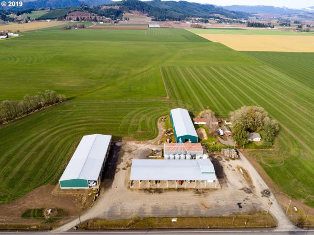 3931 NW Highway 47, Forest Grove, OR 97116 (MLS #19128577) :: McKillion Real Estate Group