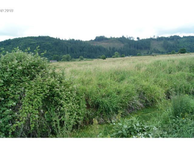 0 Dike Rd, Rainier, OR 97048 (MLS #19129630) :: Brantley Christianson Real Estate
