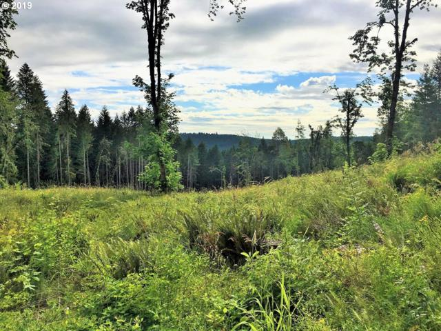 Knight Rd, Veneta, OR 97487 (MLS #19132287) :: The Galand Haas Real Estate Team