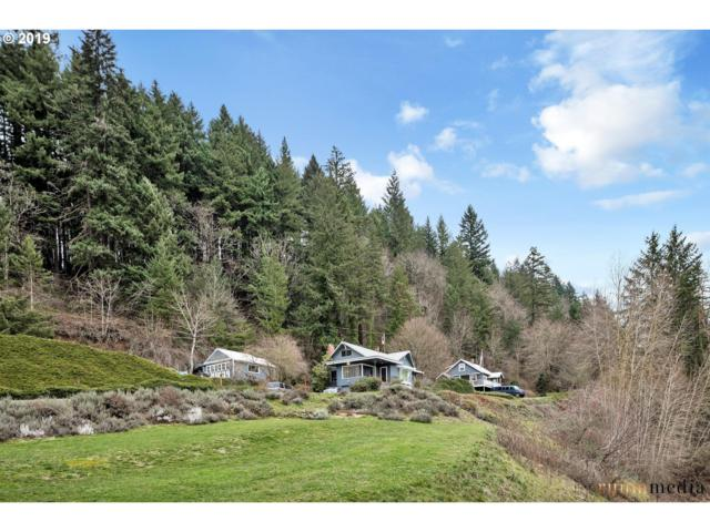 4815 NW Lewis And Clark Hwy, Camas, WA 98607 (MLS #19135775) :: Premiere Property Group LLC